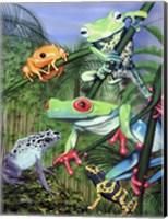 Tree Frogs Fine-Art Print