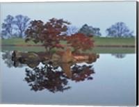 Reflections #2, Hocking Hills, Ohio 92 Fine-Art Print