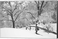 Snowscape, Farmington Hills, Michigan 08 Fine-Art Print