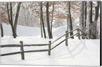 Winter Fence & Shadow, Farmington Hills, Michigan 09 Fine-Art Print
