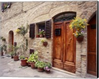 Flowers On The Wall, Tuscany, Italy 06 Fine-Art Print