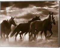 Running Horses And Sunbeams, Rothbury, Michigan Fine-Art Print