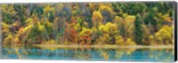 Lake And Forest In Autumn, China Fine-Art Print