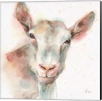 Farm Friends I Fine-Art Print