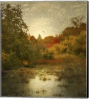 Autumn Wetlands Fine-Art Print