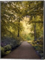 Golden Walkway Fine-Art Print