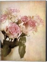 Pastel Roses Fine-Art Print