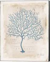 Sea Garden IV Fine-Art Print