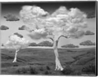 Natural Disorder Fine-Art Print
