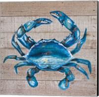Blue Crab Fine-Art Print