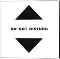 Do Not Disturb - Gamer Fine-Art Print