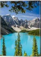 Turquoise Glimmer - Vertical Fine-Art Print