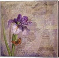 Ville de Paris I Fine-Art Print