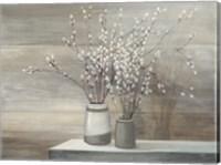 Pussy Willow Still Life Gray Pots Fine-Art Print