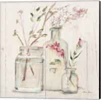 Blossoms on Birch VI Fine-Art Print