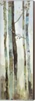 Towering Trees II Fine-Art Print