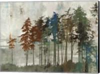 Aspen Fine-Art Print