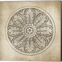 Rosette VIII Neutral Fine-Art Print