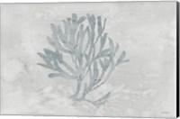 Water Coral III Fine-Art Print
