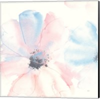 Parfait Cosmos II Fine-Art Print
