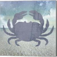 Beach Signs Crab Fine-Art Print