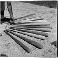 1950s Baseball Player Selecting A Variety Of Bats Fine-Art Print