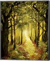 Sunlit Forest Path Fine-Art Print