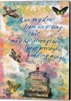 Budding Wings Fine-Art Print