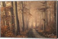 Brown Beauty Fine-Art Print