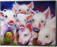Half Dozen Piglets Fine-Art Print