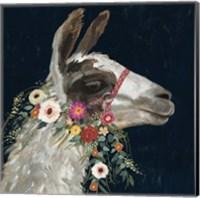 Lovely Llama I Fine-Art Print