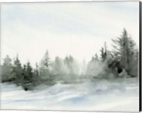 Evergreens in the Distance I Fine-Art Print