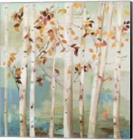Fall Birch Trees Fine-Art Print