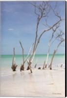 Beachwood III Fine-Art Print