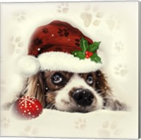 Christmas Puppy Fine-Art Print