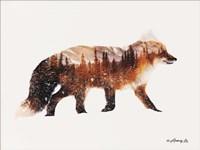 Arctic Red Fox Fine-Art Print