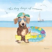 Summer Paws III Fine-Art Print