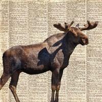Country Moose II Fine-Art Print