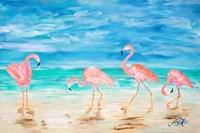 Flamingo Beach Fine-Art Print