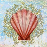 Shell Medley I Fine-Art Print