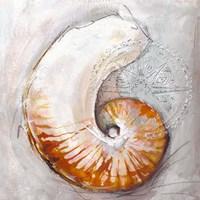 Pearl Shell Medley I Fine-Art Print