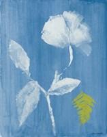 Floral Whisper I Fine-Art Print