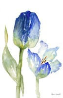 Teal and Lavender Tulips I Fine-Art Print