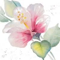 Fragrant Hibiscus II Fine-Art Print