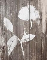 Brown Floral Whisper on Wood I Fine-Art Print