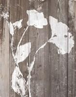 Brown Floral Whisper on Wood II Fine-Art Print