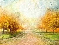 Oak Path Fine-Art Print