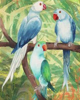 Tropical Birds I Fine-Art Print