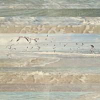 Flying Beach Birds I Fine-Art Print
