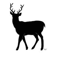 Deer Silhouette Fine-Art Print